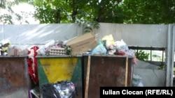 Сказать, что проблема переполненных мусорных контейнеров беспокоит жителей улицы Басария, значит не сказать ничего