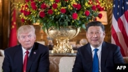 U.S. President Donald Trump (left) and Chinese President Xi Jinping during a bilateral meeting at Trump's Mar-a-Lago estate in Florida on April 6.