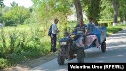 Село Долна, Молдова