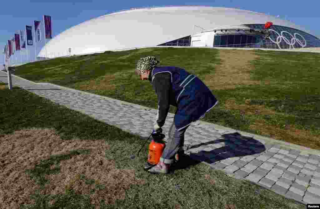 An employee sprays grass seed in front of the Bolshoi Ice Dome at the Olympic Park in Sochi on February 4.