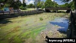 Река Салгир в центральной части Симферополя вновь превращается в болото