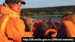 Спасение животных в Иркутской области