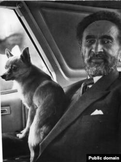 Та самая любимая собачка Хайле Селассие по кличке Лулу. Визит в Канаду. Апрель 1967 года