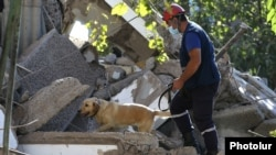 Armenian -- A rescuer and a sniffer dog search through the rubble of an apartment building severely damaged by an explosion, Yerevan, August 26, 2020.