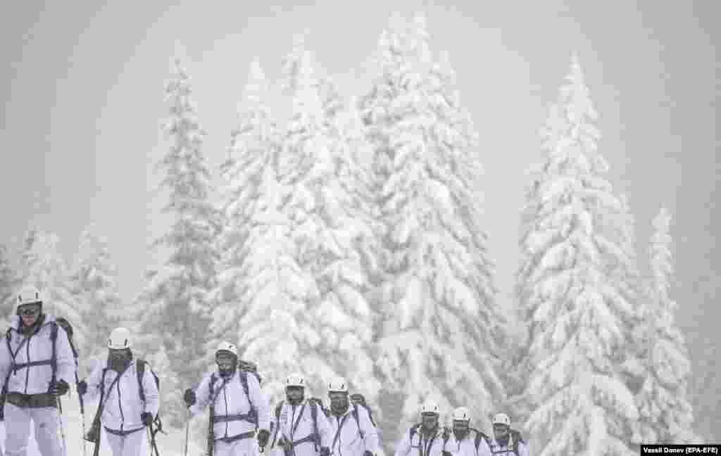 Военнослужащие 101-го альпийского полка Болгарии принимают участие в учениях в горах Родопы, недалеко от Смоляна