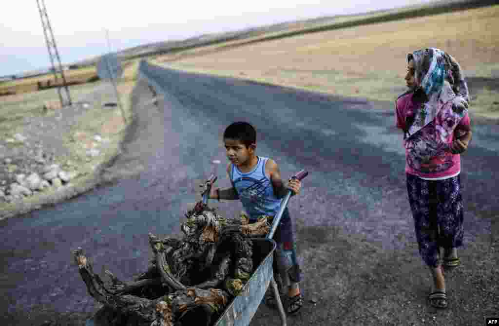 A young boy pushes a wheelbarrow filled with wood in the Turkish-Syrian border town of Karkamis. (AFP/Bulent Kilic)