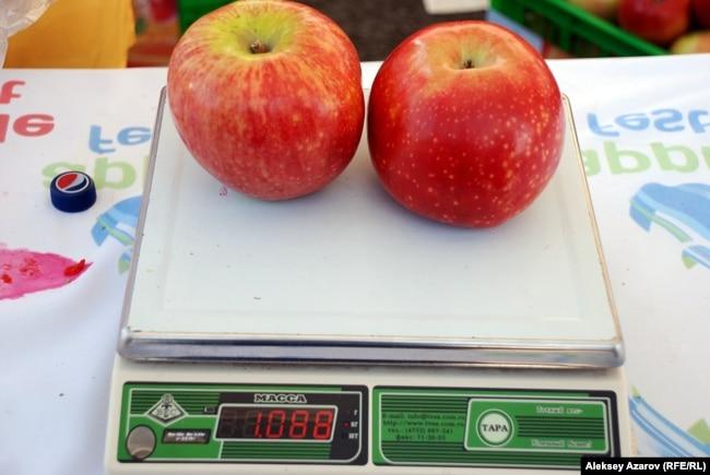 Апорттың екеуінің салмағы бір килограмнан асады. Алматы, 16 қыркүйек 2012 жыл.