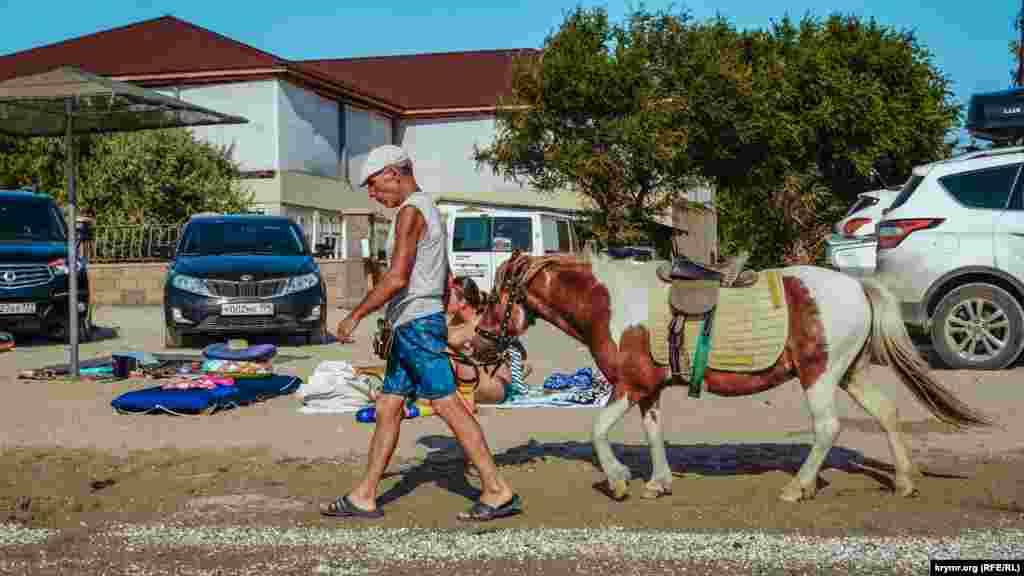 Прогулянка на конях – одна з розваг у Мисовому