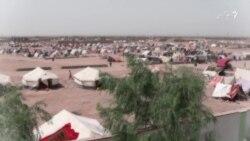 خشکالی میلیونها افغان را متأثر ساخته است