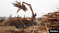 Trideset i pet posto drvne industrije u BiH odnosi se na izvoz trupaca, rezane građe i ogrijevnog drveta