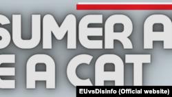 Sfatul consumatorului: fă-te pisică.