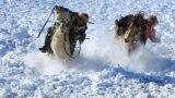 Кочевники во Внутренней Монголии