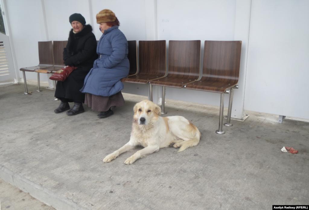 В ожидании автобуса, Ашхабад