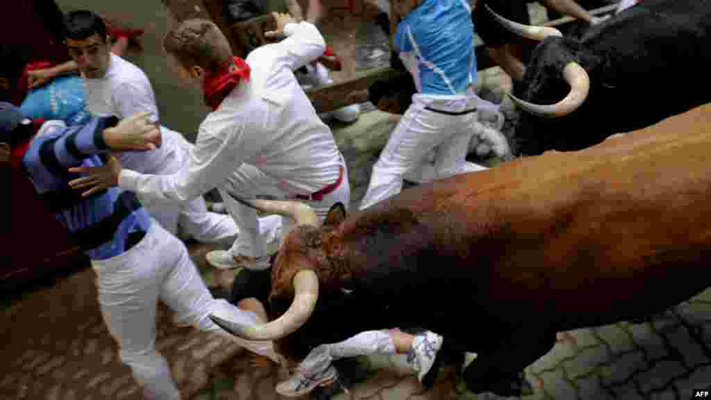 A runner falls in front of Cebada Gago bulls during the third run of the bulls at the San Fermin festival in the northern Spanish city of Pamplona on July 9. (AFP/Pedro Armestre)