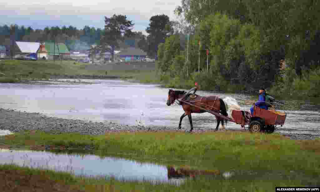 "A man returning to Petropavlovka in a horse-drawn carriage.   As well as liking the religious aspect of the community, some Vissarionites cite the appeal of the settlement's ""clean air, clean nature, clean water, [and] clean Earth."""