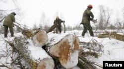 Ағаш құлатып жатқан жұмысшылар. Беларусь, 21 ақпан 2011 жылү