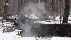 На Львівщині згоріла криївка УПА – у поліції три версії (відео)