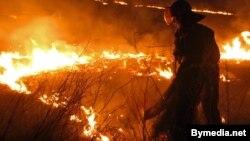 Пажарны тушыць падпаленую траву, архіўнае фота