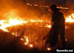 Пажарныя тушаць падпаленую траву, архіўнае фота