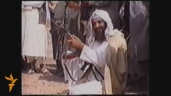 Osama Bin Laden: A History Of Violence