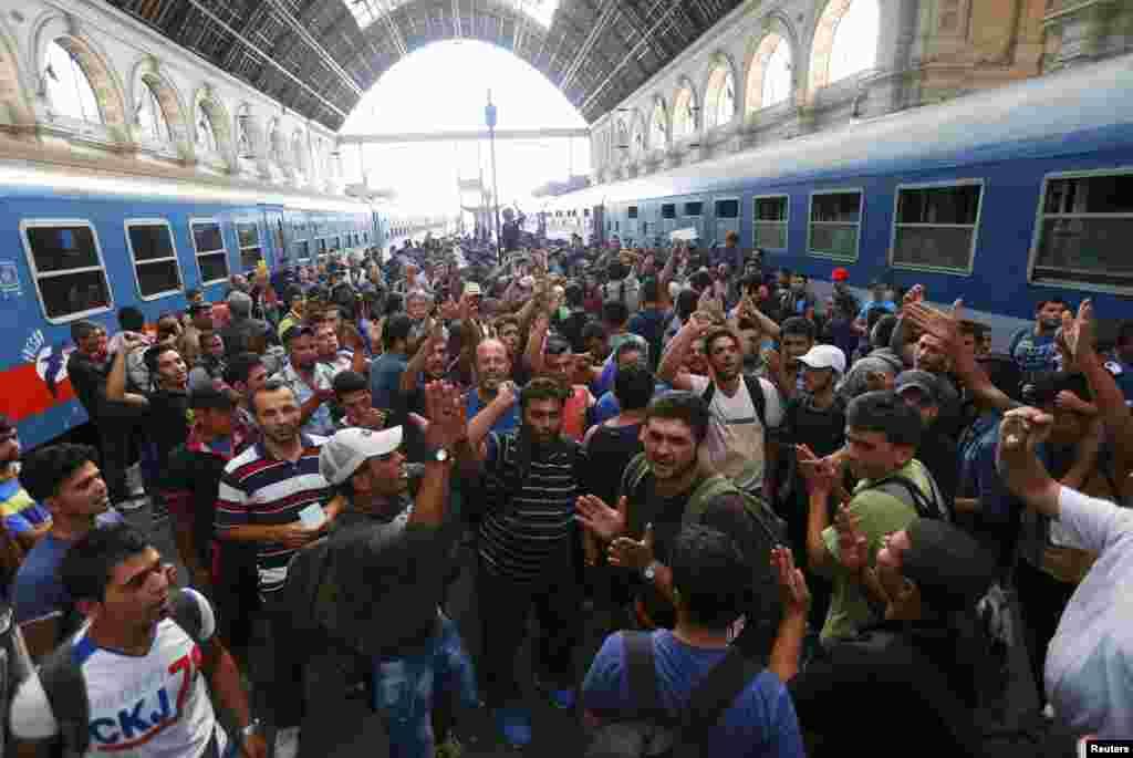 Протесты мигрантов в венгерской столице