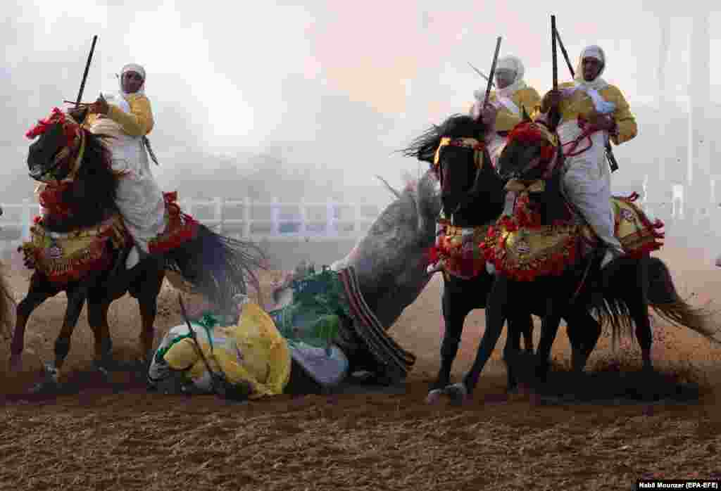 A traditional Moroccan knight falls off his horse in an equestrian show during the Festival of Tbourida, a competition between Moroccan tribes, in El Jadida, Morocco. Tbourida is a traditional exhibition of horsemanship in the Maghreb performed during cultural festivals and to close Maghrebi wedding celebrations. (epa-EFE/Nabil Mounzer)