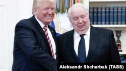 Sergei Kislyak (djathtas) duke u përshëndetur me presidentin amerikan Donald Trump më 10 maj të këtij viti në Uashington