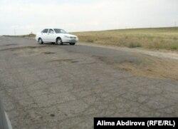 Кеңқияқ ауылына баратын жол. Ақтөбе облысы, 11 маусым 2011 жыл. (Көрнекі сурет)