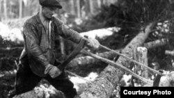 Работа на лесозаготовке