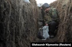 Imagine din tranșeele de la granița Ucrainei cu Rusia. Un membru al forțelor armate ucrainene se joacă cu doi pui de cățel pe linia de separare de rebelii pro-ruși în regiunea Donețk/ Ucraina - 10 aprilie.