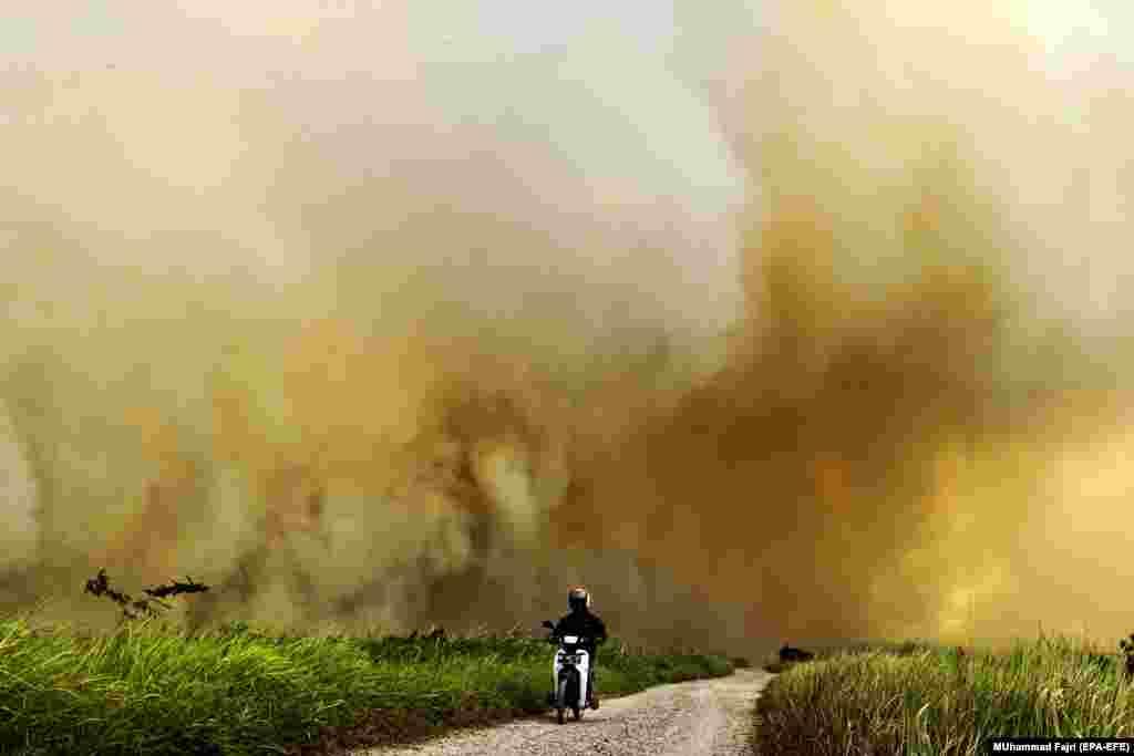Чалавек едзе на матацыкле міма палаючага торфу. Ужо ў шасьці правінцыях Інданэзіі абвясьцілі надзвычайнае становішча.