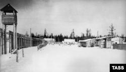 Исправительно-трудовой лагерь, 1951 год