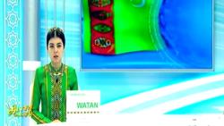 'Türkmenistanlylaryň ençemesi TW-niň kesilmegi zerarly Dünýä çempionatyna tomaşa etmekden mahrum boldy'