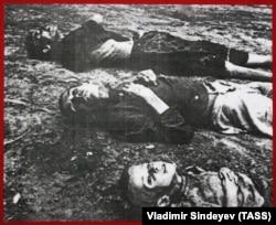 Під час Голодомору-геноциду 1932–1933 років в Україні загинуло приблизно 4 мільйони осіб, а втрати українців у частині ненароджених становлять понад 6 мільйонів