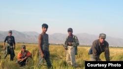 Полевым работам жители Таджикистана предпочитают судьбу гастарбайтера