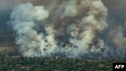 Дым от лесного пожара на юго-западе Бразилии