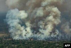 Пожар в лесах Амазонки. Бразилия. 24 августа 2019 года.