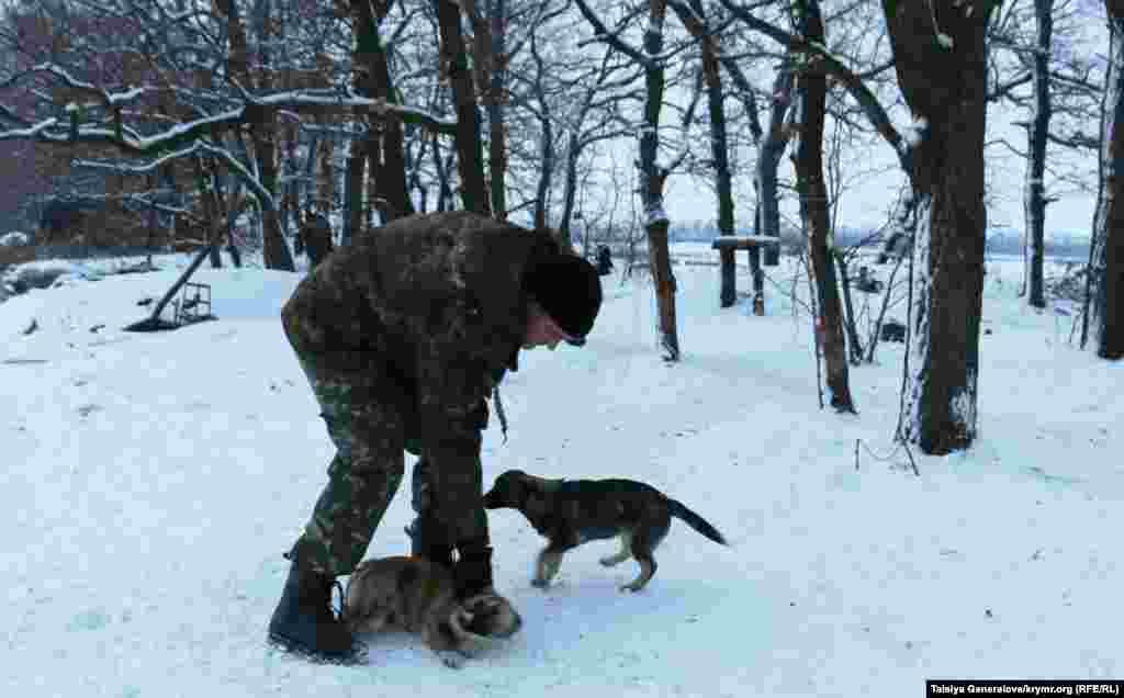 Военный играет с собаками. Одну из них зовут Гильза. Еще бойцы в разных бригадах любят называть своих питомцев Пулями.