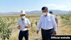 Президент Сооронбай Жээнбеков тамчылатып сугарыла турган бакты өстүрүп жаткан фермерлер менен. Баткен облусу. 12-август, 2020-жыл.