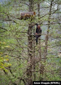 ხეზე ამძვრალი კაცი, ზემოთ სკა