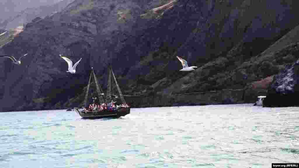 На зворотному шляху кожен катер супроводжує зграя чайок – капітани й туристи підгодовують пернатих