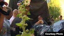 Сотрудники полиции выносят тела убитых в квартире в Нижнем Новгороде.