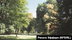 Лихтентальская аллея в Баден-Бадене, самая русская аллея в Германии