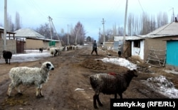Талас көшелерінің бірі. Қырғызстан, 15 желтоқсан 2013 жыл. (Көрнекі сурет)