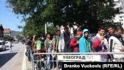 Izbeglice u Preševu, 10. septembar 2015.