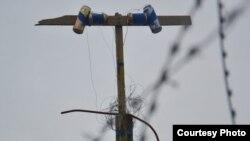 "Телеантенна в Олимпийском парке. Фото ""БлогСочи"""
