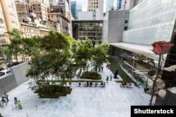 Музей сучасного мистецтва в Нью-Йорку