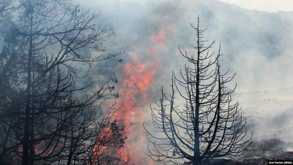 سوختن ۱۵۰ هکتار از جنگلهای شمال ایران در تعطیلات نوروز