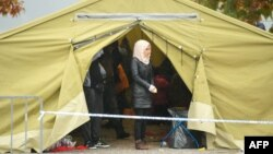 Табір біженців поблизу хорватсько-словенського кордону, 19 жовтня 2015 року