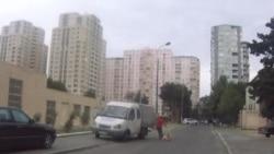 Gruesome Dog Culling In Baku